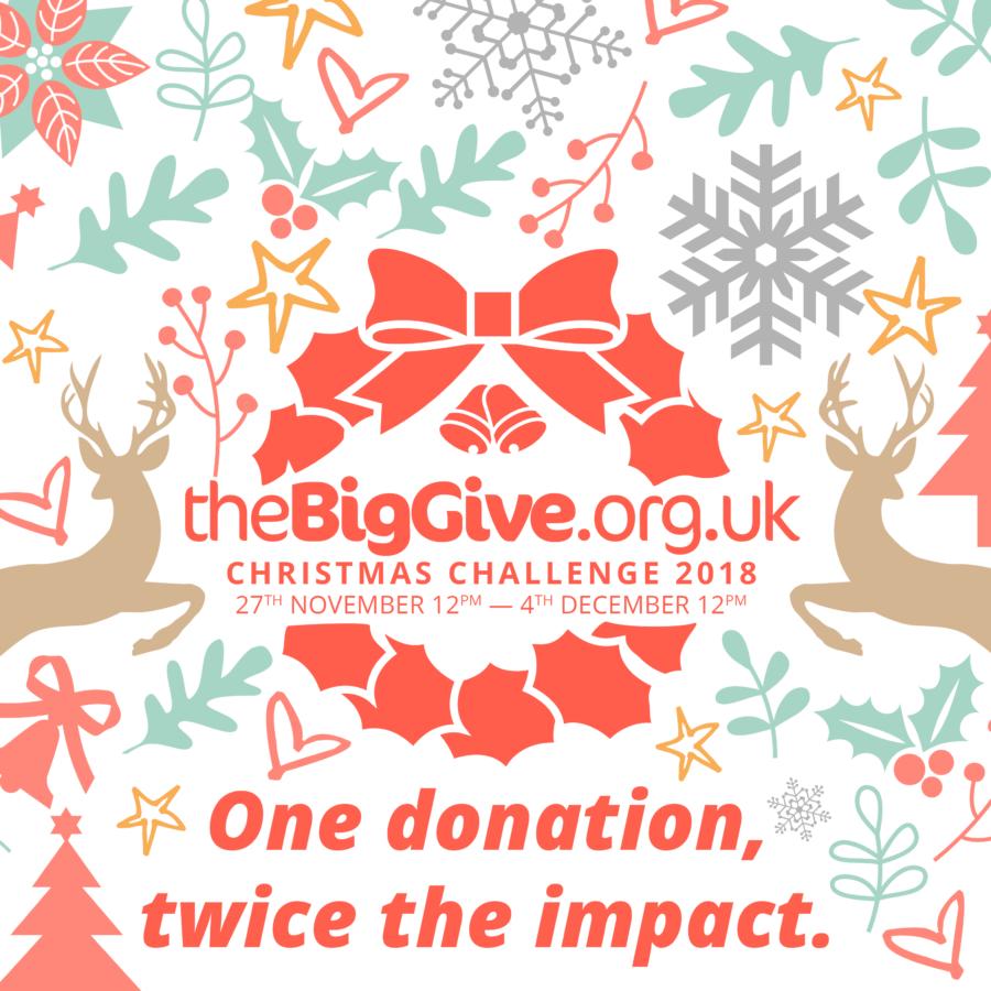 Big Give Christmas Challenge logo