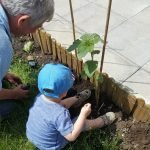 Little boy helps with gardening session